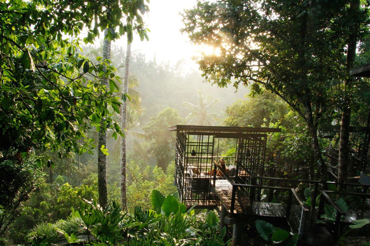 ジャングルの鳥かごで現実逃避。カフェ・ガゼボ