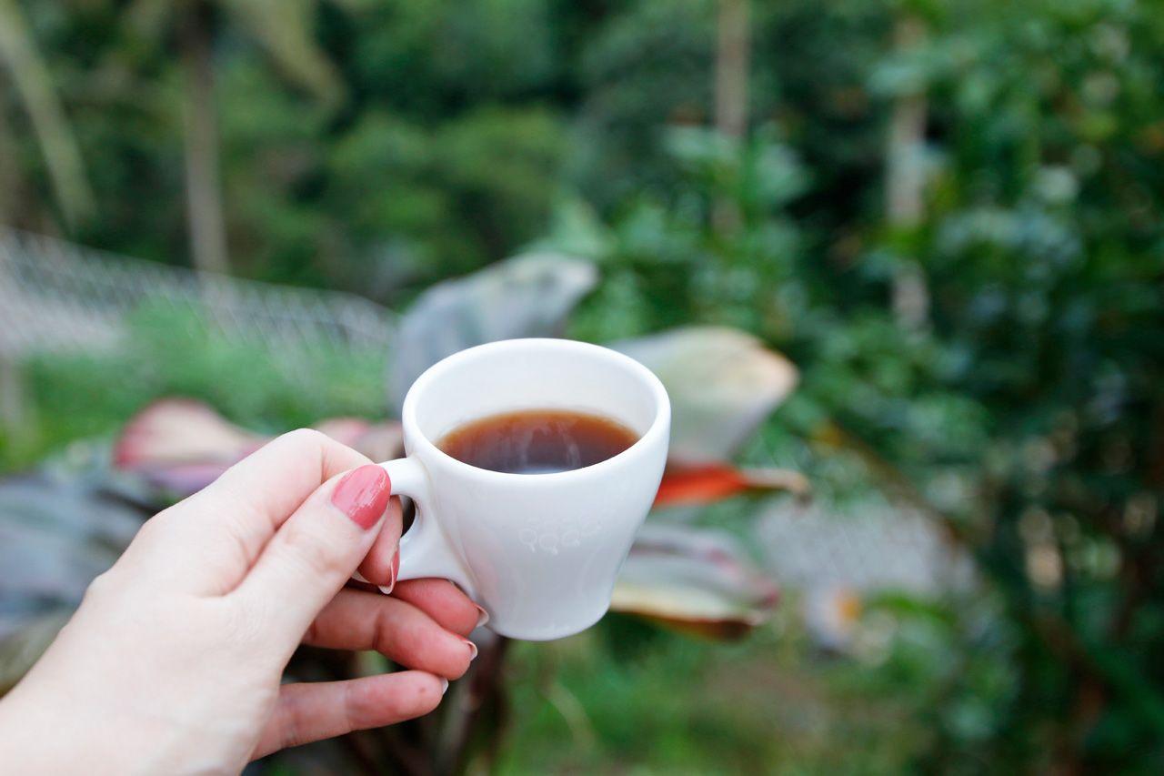 14種類の無料テイスティング!絶景コーヒーを楽しもう