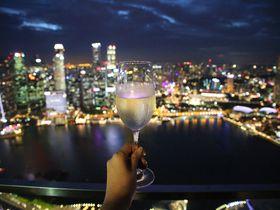 マリーナベイ・サンズに上る3つの方法!シンガポールの絶景をその目に