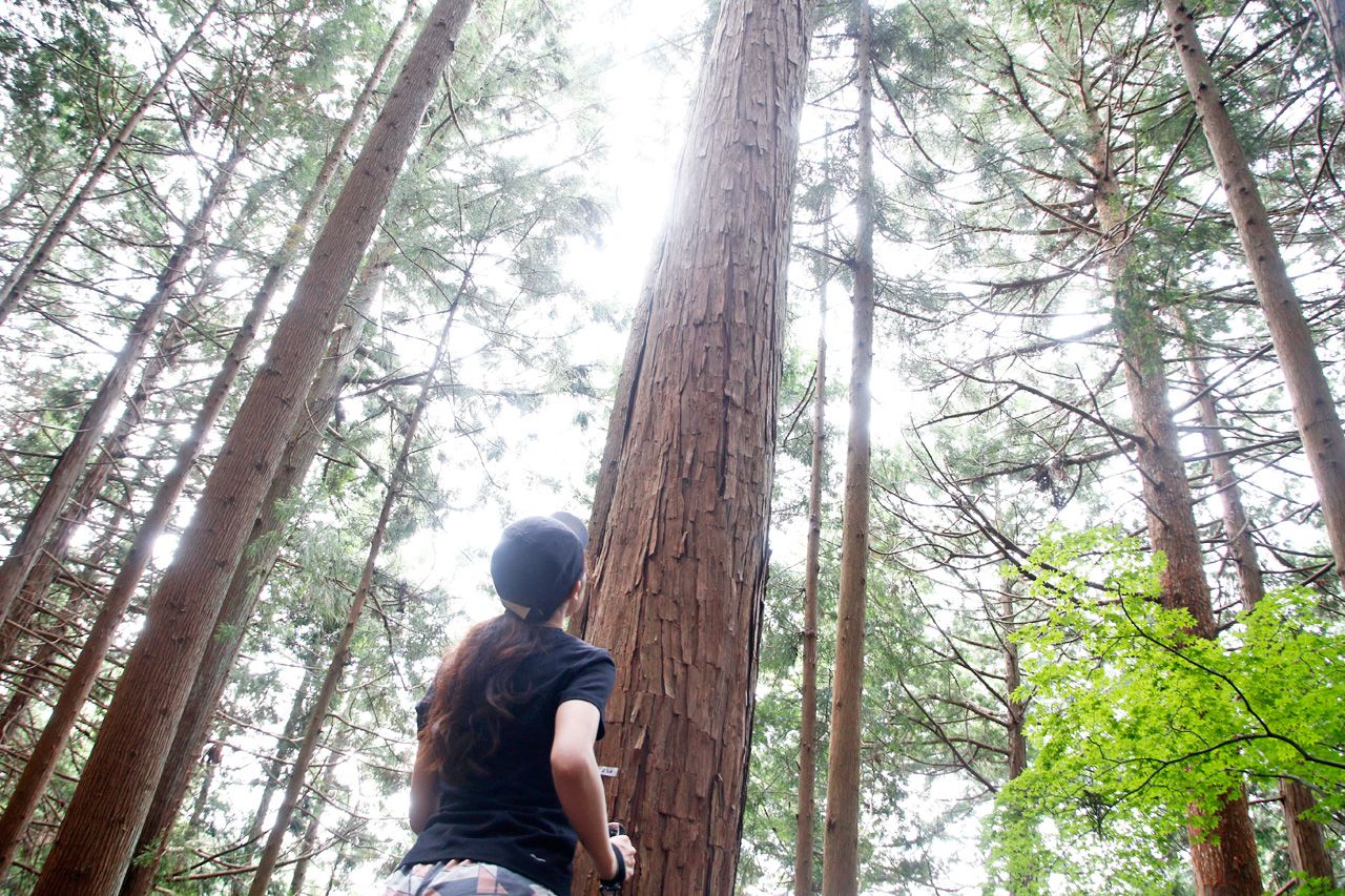 午前中は有酸素運動で森トレ。ウォーキング&エアロビ