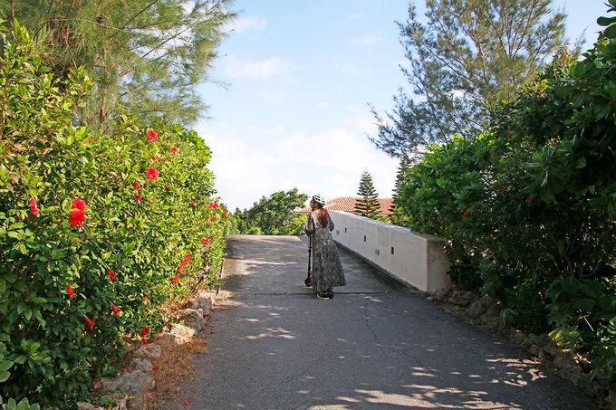 星野リゾート リゾナーレ小浜島とは
