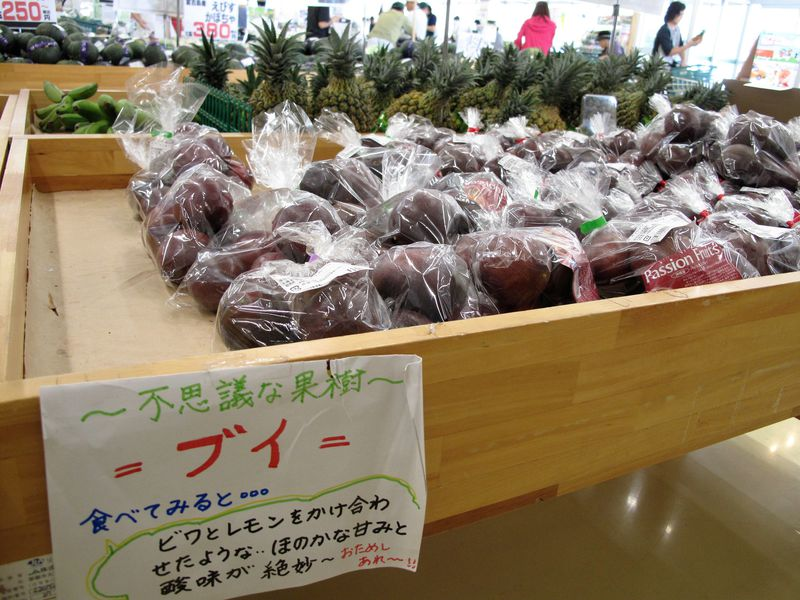 沖縄のスローフードが手に入る!地元食材が楽しめるJAおきなわ くがに市場