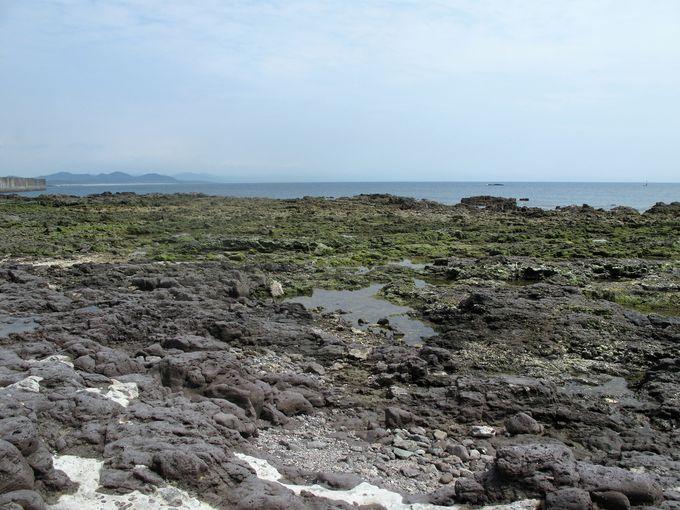 東シナ海を一望する串木野港灯台