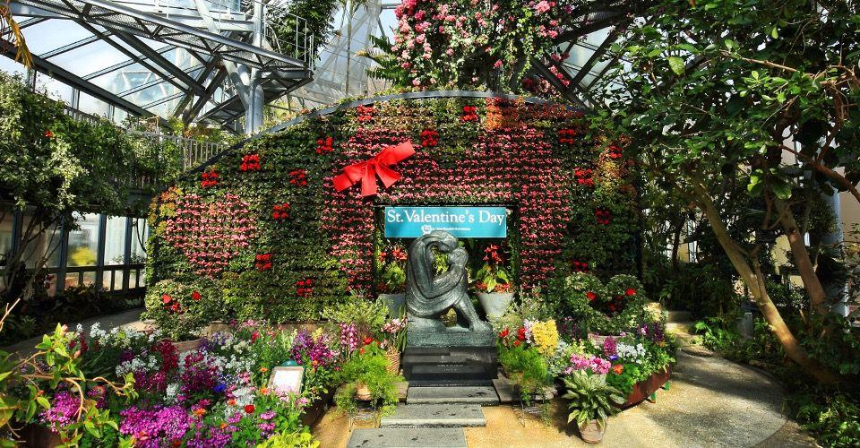 四季折々の香りと色に包まれる「神戸布引ハーブ園」