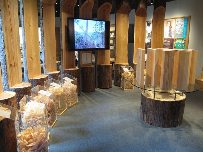 五感に響く展示と人気のものづくり体験の魅力