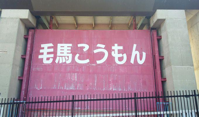 大阪の人も知らない!?大阪・淀川の不思議な景色を歩く水めぐり