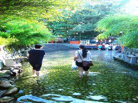 足つけ神事でひんやり無病息災!京都・下鴨神社 みたらし祭