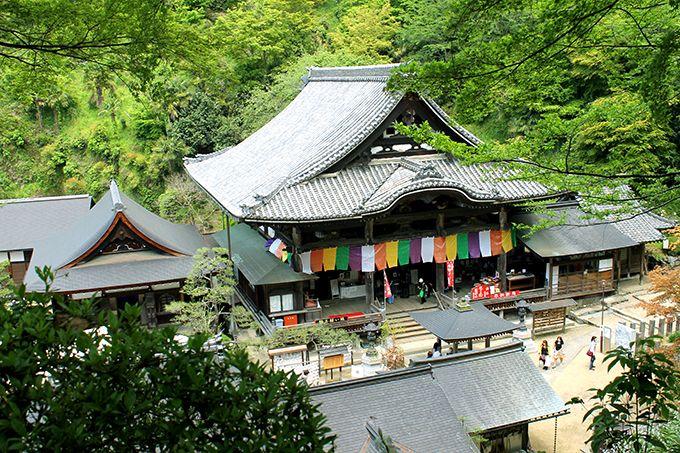 龍の眠る寺は日本最初の厄除け霊場