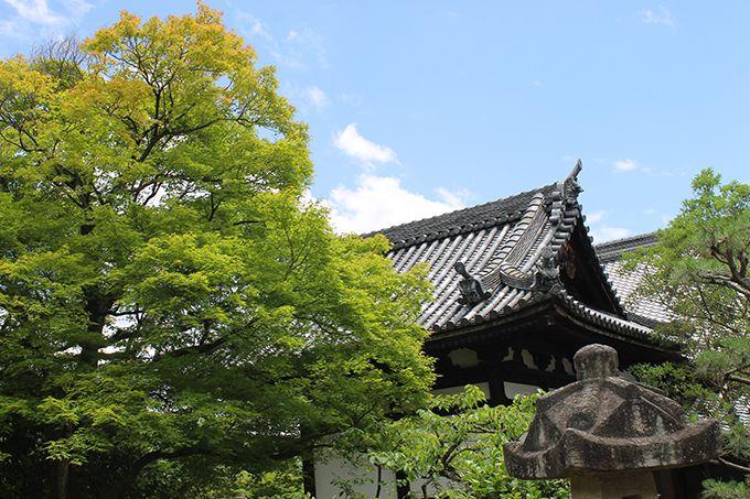 京都の名刹で感じる最強の浮世絵