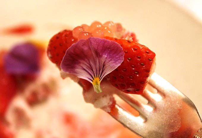 華やかな春の一皿「ストロベリーカプレーゼ」