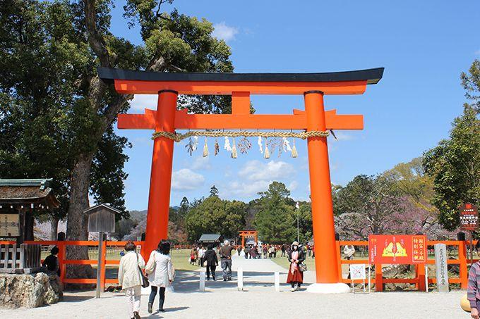 京の名水「神山湧水」