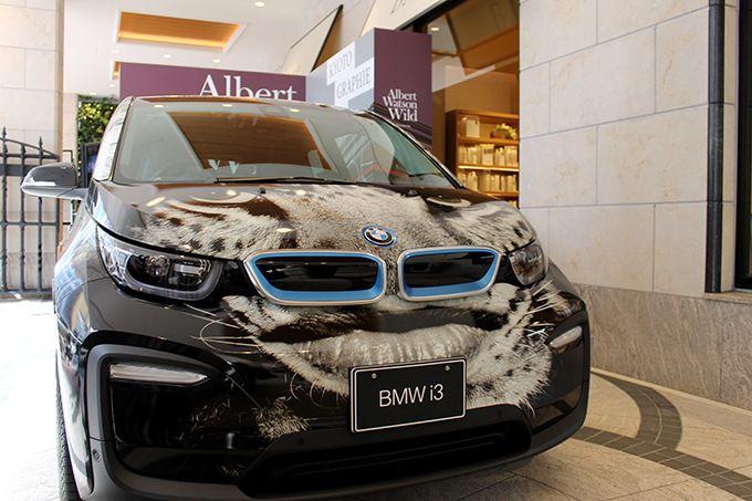 BMWに無料で乗れちゃうラッキーも!?