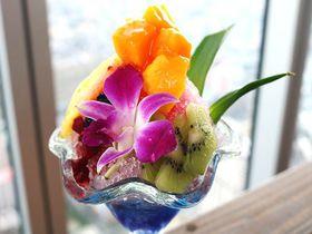 夏休みイベント!大阪・あべのハルカス「ハルカス ウォーターリゾート」で水遊び