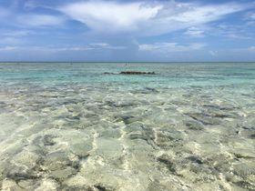離島が初めてでも楽しめる!久米島の魅力と遊び方