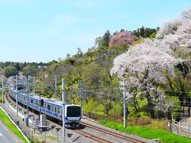 茨城県水戸市には14日間だけ開く駅がある!?