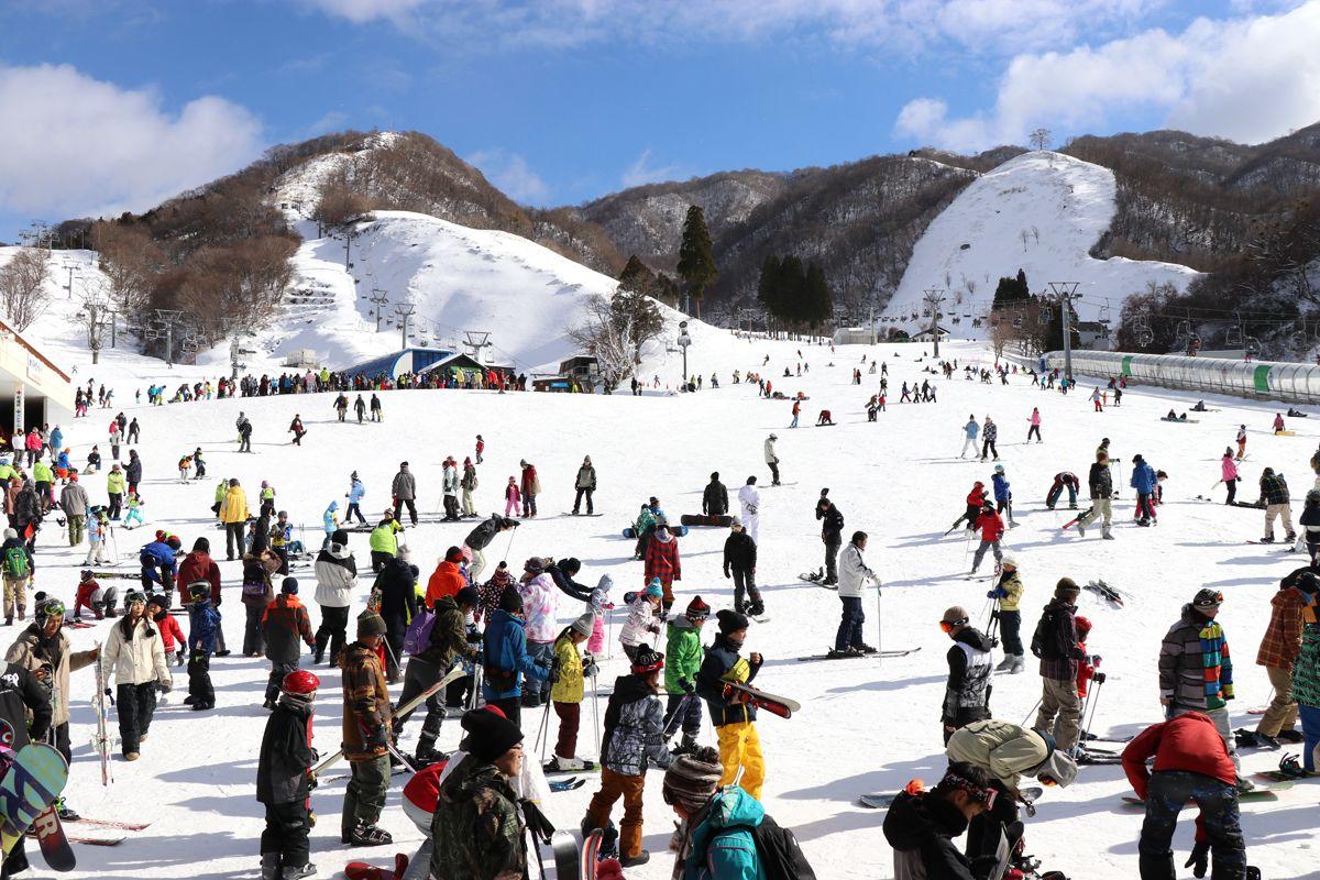 日本最速の高速リフトがすごい!滋賀・奥伊吹スキー場で滑ろう