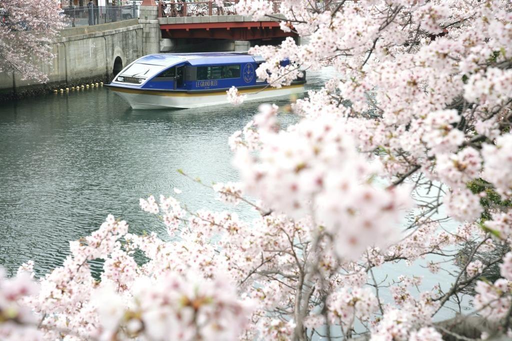 ヨコハマ グランド インターコンチネンタル ホテル「大岡川桜クルーズ」