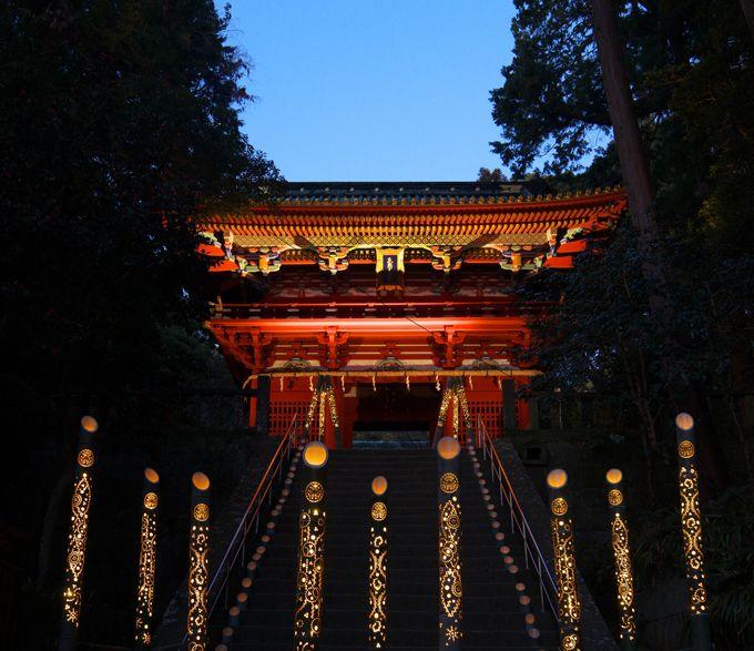 貴重な夜間の特別拝観「天下泰平の竹あかり」