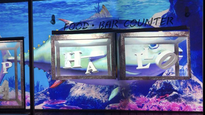 海の家でマグロが泳ぐ!?三重・御殿場海岸プロジェクションマッピング