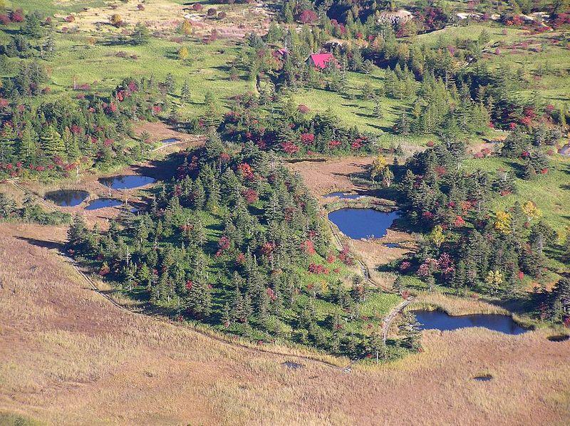 穴地獄もラムサール条約の保護対象! 素晴らしき芳ケ平湿地群