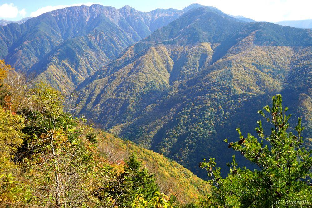 南アルプスエコーラインでしらびそ高原と南アルプスの紅葉を満喫!