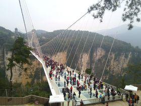 地上300mで空中散歩!中国張家界・世界最長ガラスの吊り橋