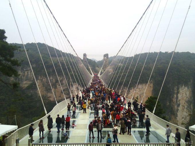 世界最長、最高度を誇るガラスの吊り橋「大峡谷玻璃大橋」