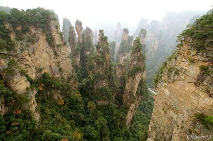 奇峰の林・仙境の「武陵源」とは