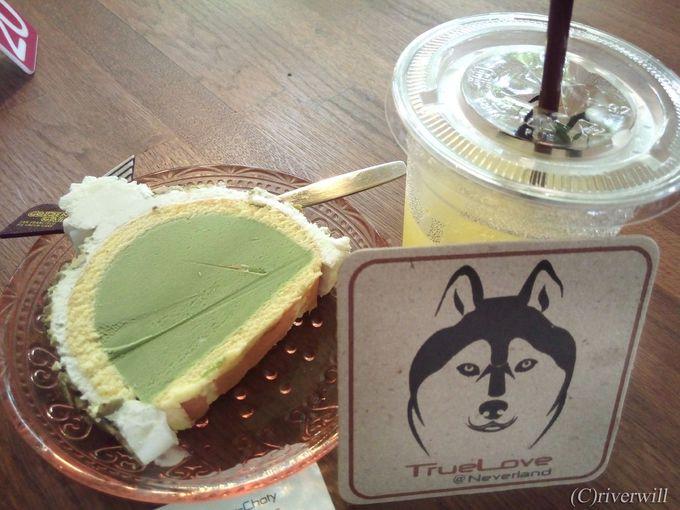 バンコクの閑静な住宅街にある犬カフェ「TrueLove@Neverland」