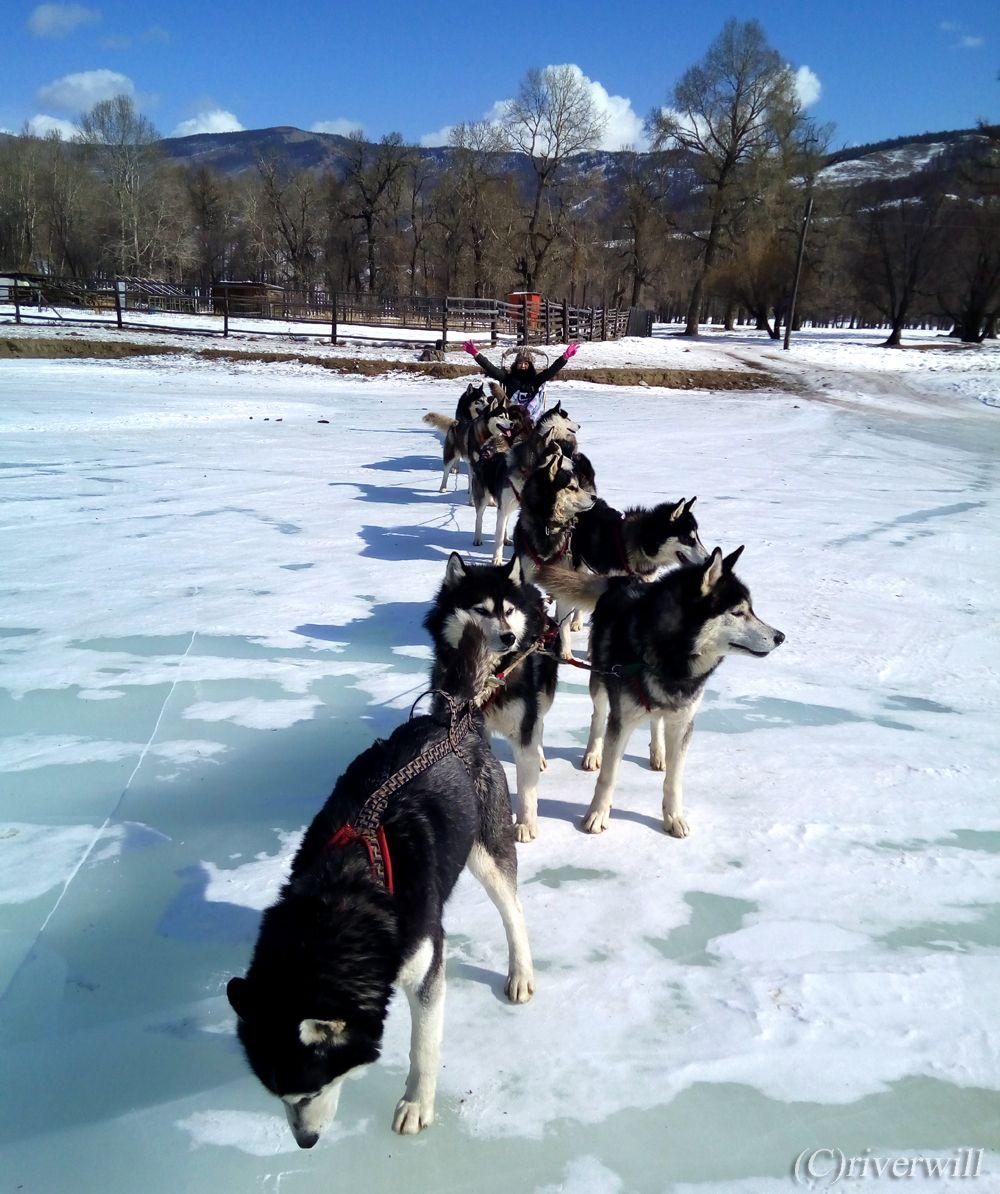 チンギス・ハーン騎馬像テーマパークへの行き方