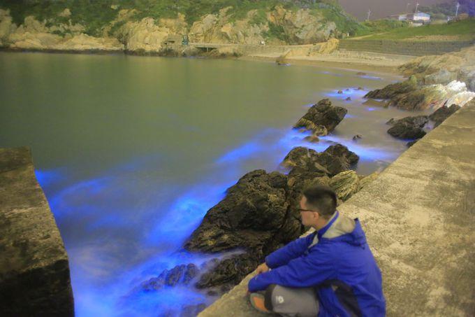 馬祖で見られる神秘のベール「青の涙」