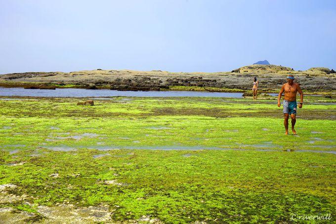 天然海水プールで海水浴も楽しもう!