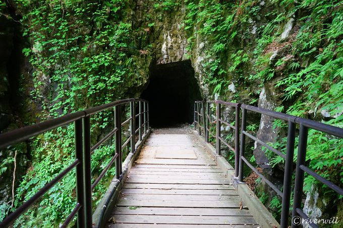 今では気軽に訪れることができる涼感渓谷ハイキング