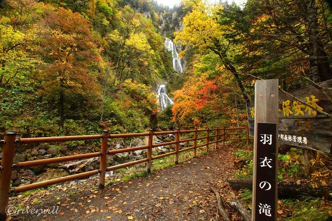 いよいよ名瀑「羽衣の滝」とご対面!