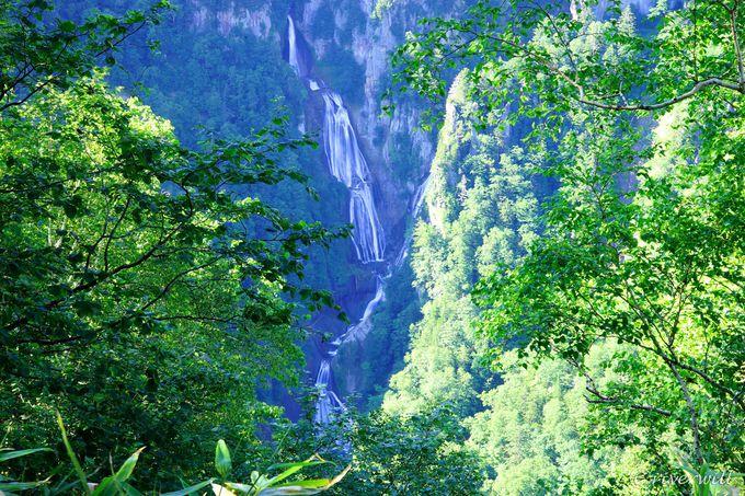 滝見台から眺める羽衣の滝の全容
