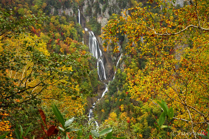滝見台から眺める7段の羽衣の滝