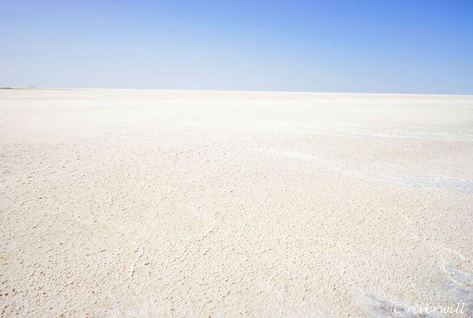 14.バルサケルメス塩湖