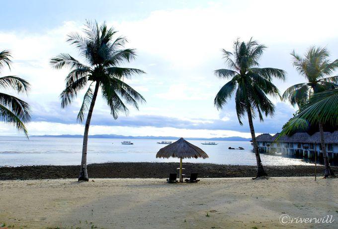 楽園エルニドが誇る「アプリット島」とは