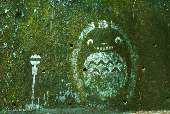ジブリファン必見!埼玉秩父の定峰峠に現れた謎の苔アート