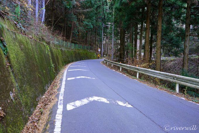 埼玉秩父の定峰峠に現れた謎の苔アート