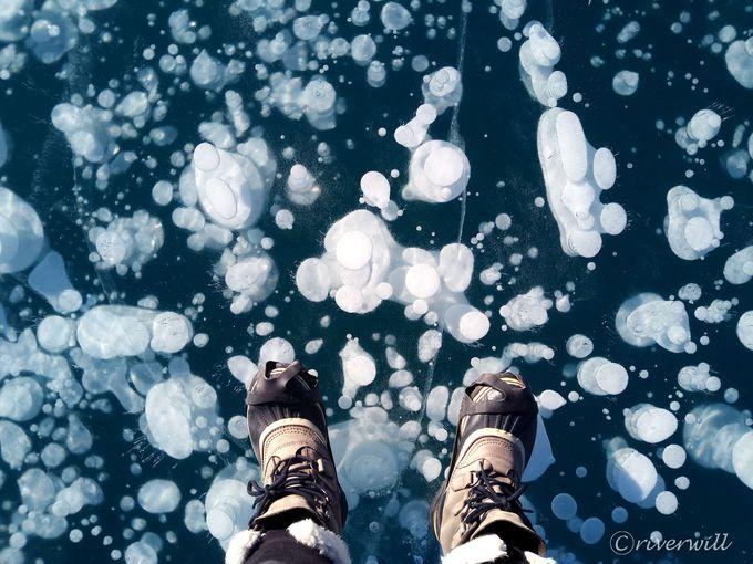 アイスバブルの聖地!カナダのアブラハムレイク