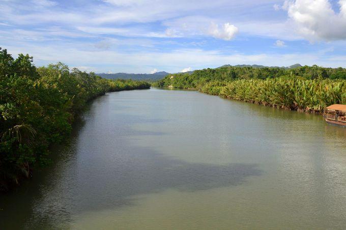 アバタン川のホタルクルーズとは
