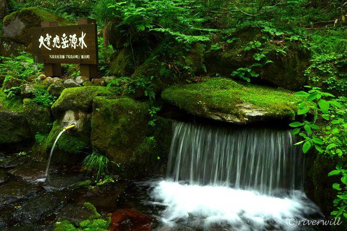 「源泉歩道」はマイナス5度の涼感スポット!