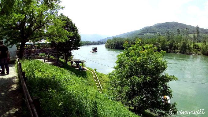 川のほとりでのんびり鑑賞