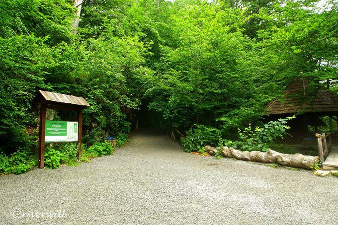 「ビガーの泉」へのショートハイキング