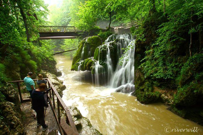 奇跡のような美しい苔の滝「ビガーの滝」