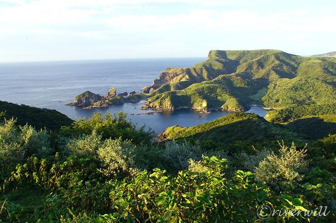 隠岐随一の景勝地「国賀海岸」を2つの展望ポイントから堪能