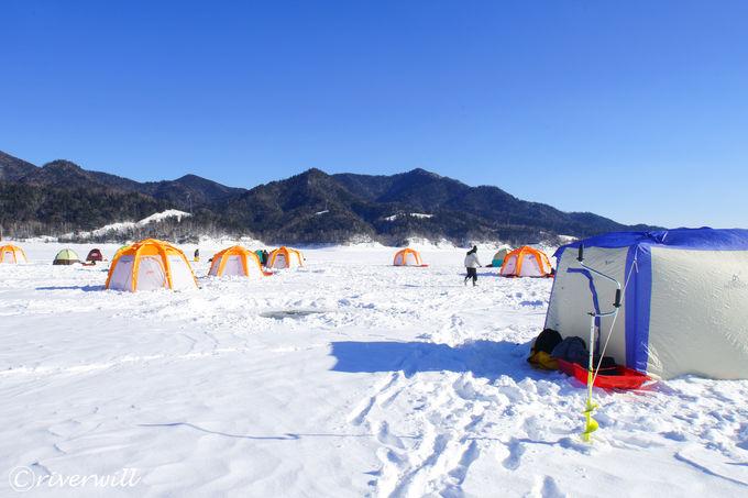 ワカサギ釣りで賑わう冬の糠平湖