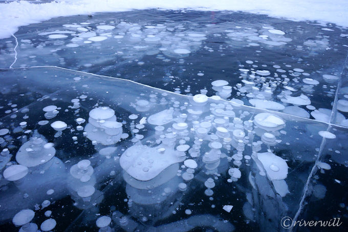 自然が魅せた氷の芸術「アイスバブル」