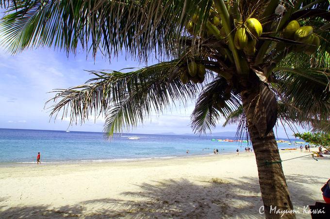 まさに南国ビーチ!のんびり過ごせるホワイトビーチ
